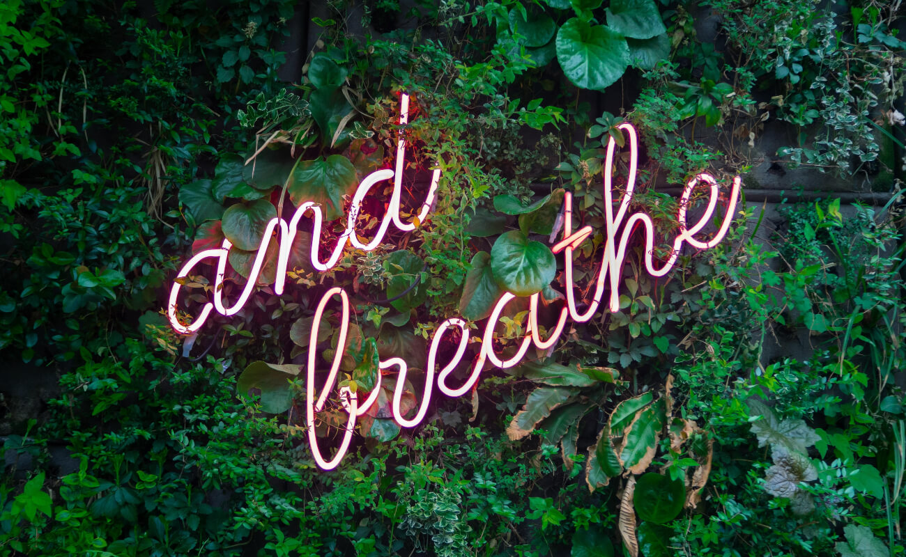 background of green leaves with pink neon sign saying 'and breathe'